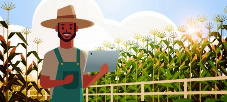 3 Manfaat Aplikasi Pangan dan Pertanian dalam Meningkatkan Kesejahteraan Masyarakat